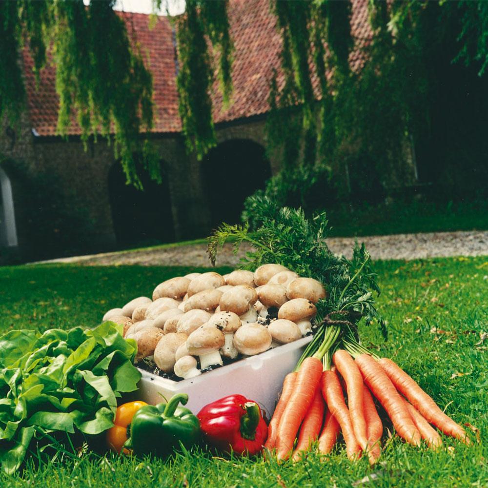 Franse champignon 7,5 liter