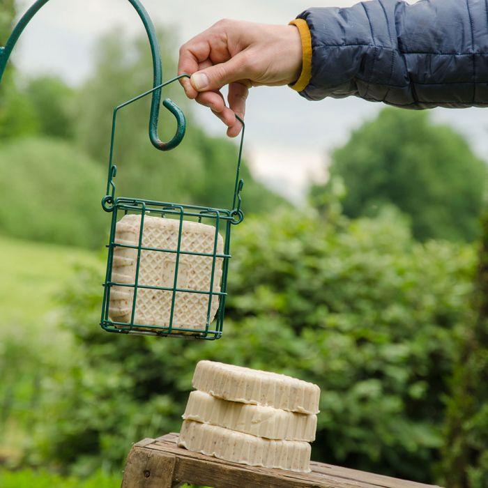 Vetblok voor roodborstjes