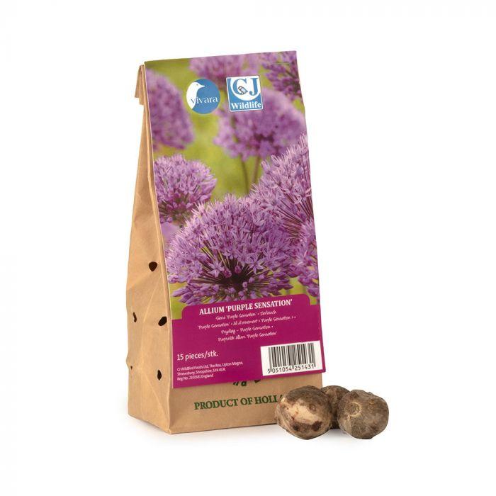 Biologische bloembollen Sierui 'Purple Sensation'
