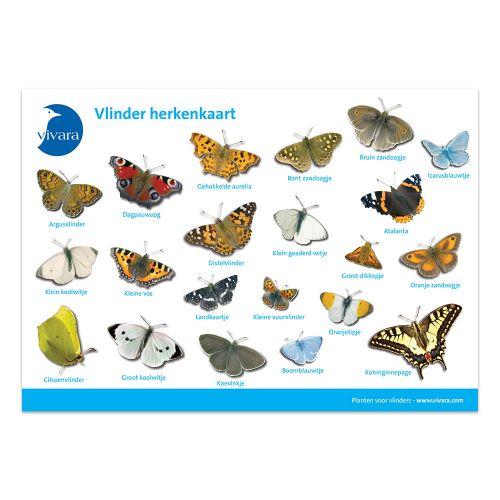 Kijkkaart Vlinders