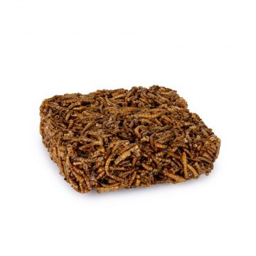 Gedroogde Meelwormenblok 90 gram