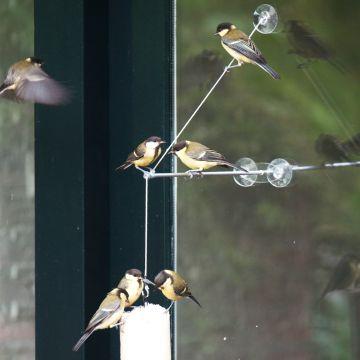 """Raamhanger """"BirdSwing XXL"""""""