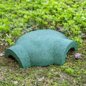 Kikker- en paddenhuis groen