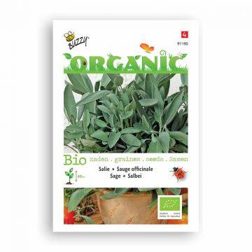 Buzzy® Organic Salie  (BIO)