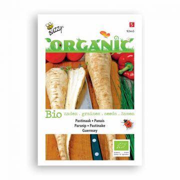 Buzzy® Organic Pastinaak Guernsey (BIO)