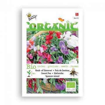 Buzzy® Organic Lathyrus Spencer gemengd (BIO)