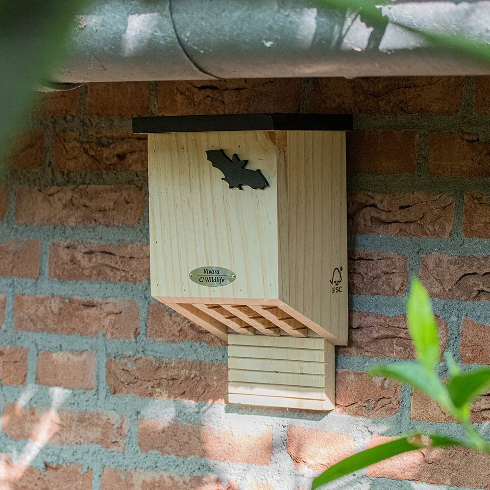 Vleermuizenkast Falkenstein