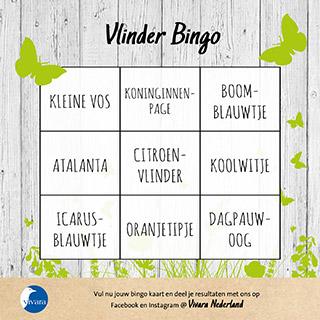 Vlinder Bingo