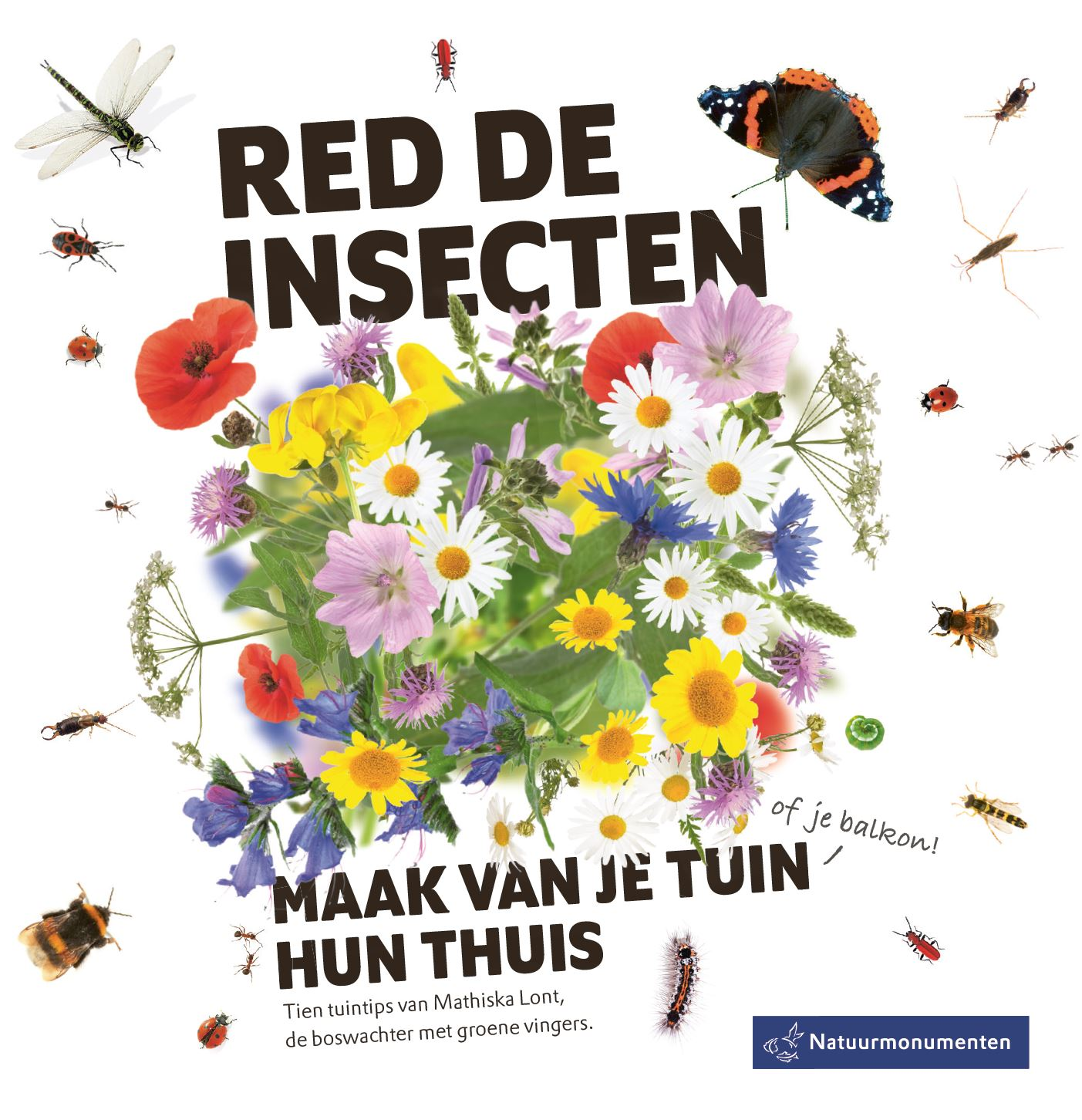 Red de insecten campagne