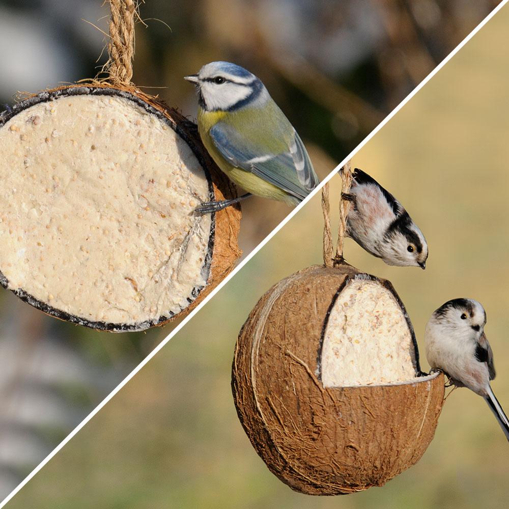 Gevulde kokosnoot original