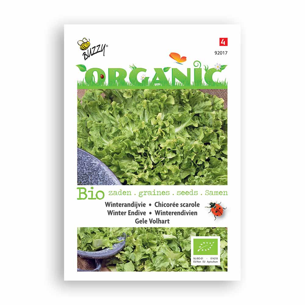 Buzzy� Organic Andijvie gele Volhart (BIO)