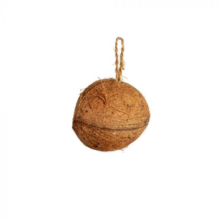 Hi energy kokosnoot met pindakaas