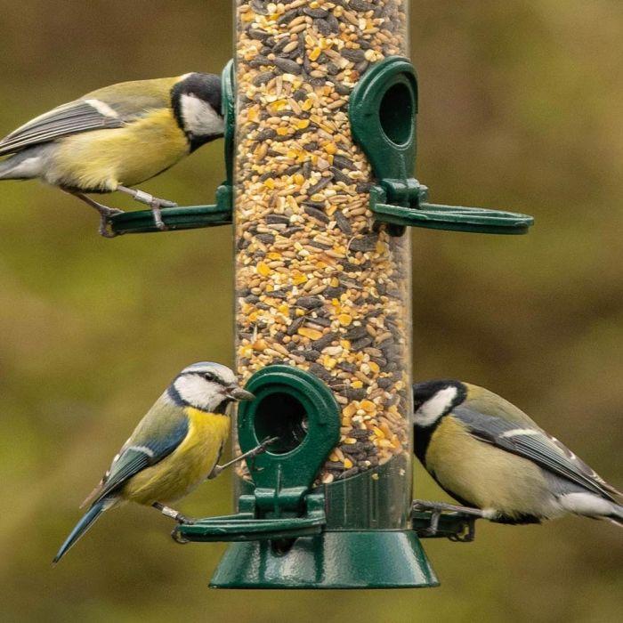 Premium Bio Vogelvoer