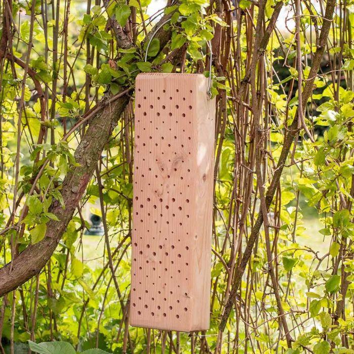 Insectenblok Sicilië