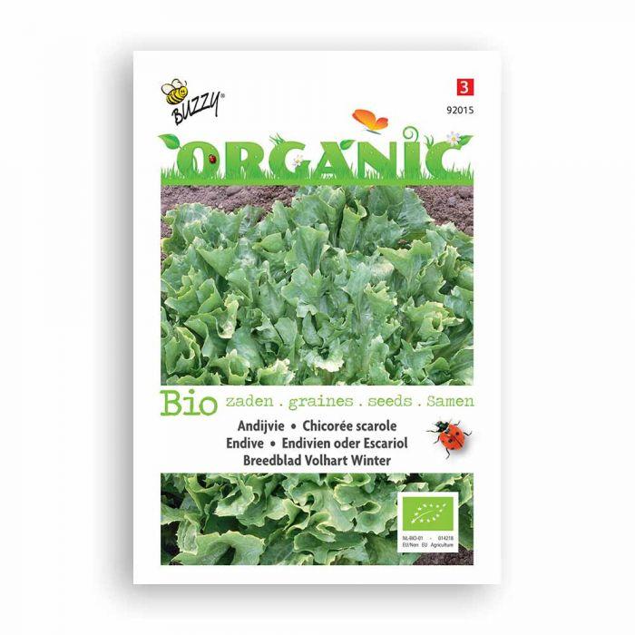 Buzzy® Organic Andijvie Nr. 5 (BIO)