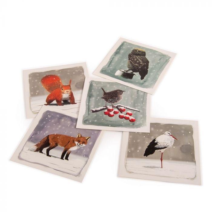 Natuurmonumenten kaartenset winterdieren Myrte