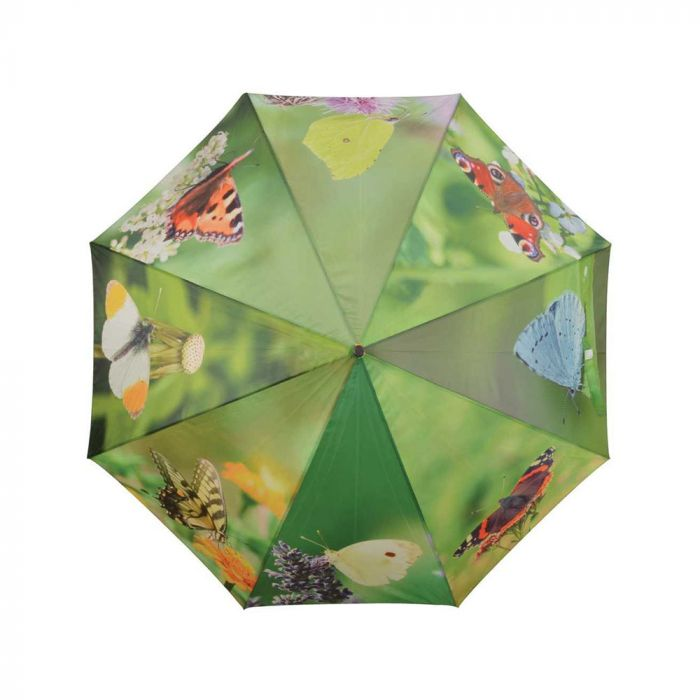 Paraplu vlinder