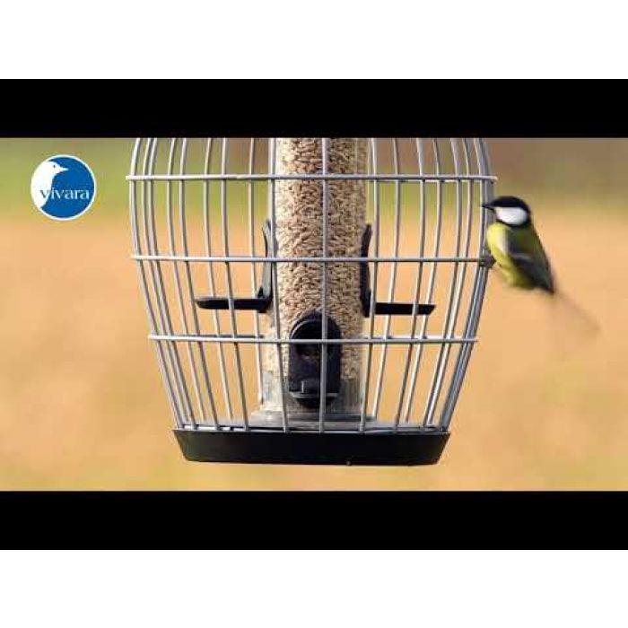Beschermsilo voor kleine vogels Aura