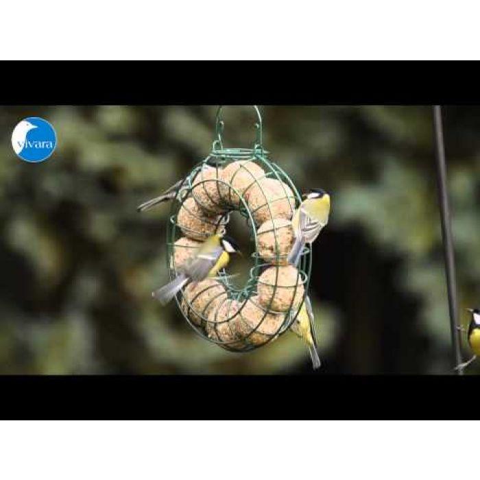 Vetbollen met meelwormen - 6 stuks