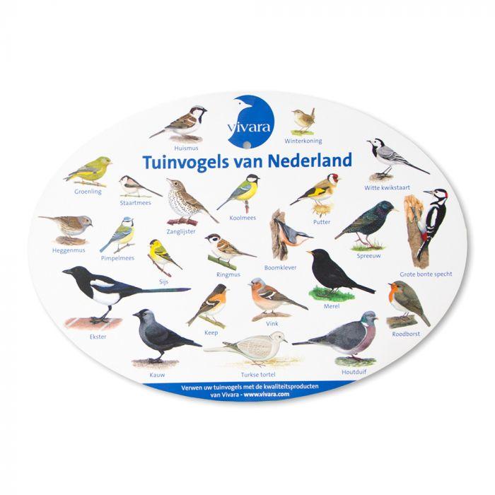 Raamposter Tuinvogels