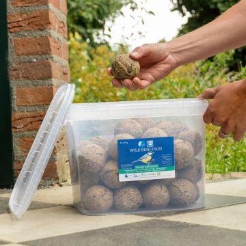 50 Vetbollen met insecten in emmer