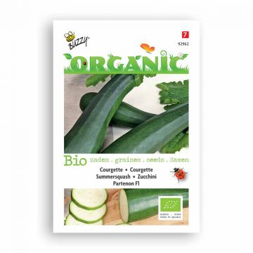 Buzzy® Organic Courgette Partenon F1 (BIO)