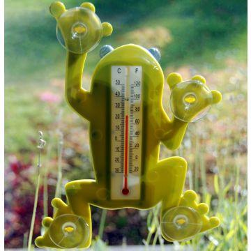 Raamthermometer kikker