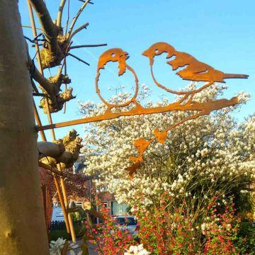 Metalbird Huismus