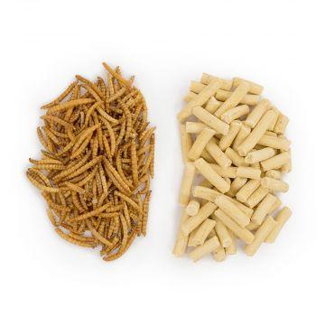 50/50 meelwormenpakket