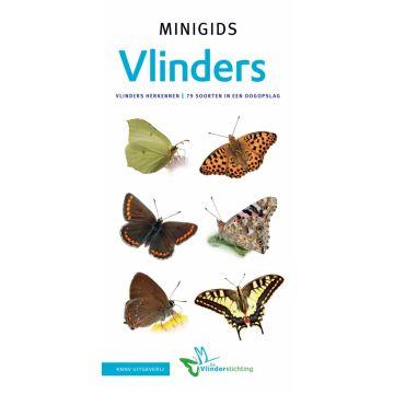Minigids vlinders van Nederland en België