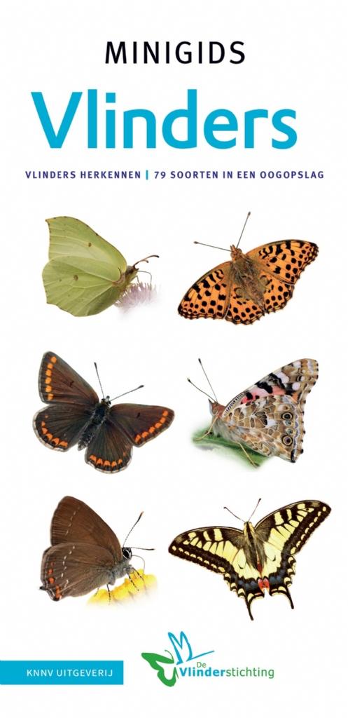 Minigids vlinders van Nederland en Belgi�