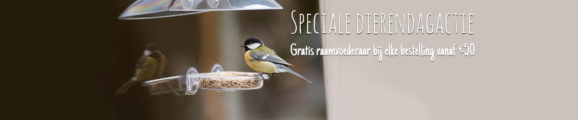 Homepage banner NL Dierendag