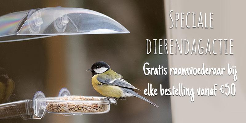 Homepage banner NL Mobiel Dierendag