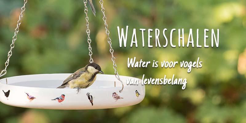 waterschalen